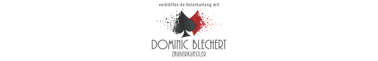verblüffen.de Unterhaltung mit Dominic Blechert