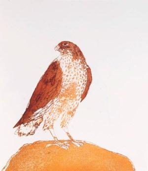 Honey buzzard Signed  by Elisabeth Frink