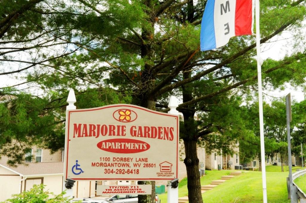 Man arrested after reports of gunshots fired at Marjorie Gardens ...