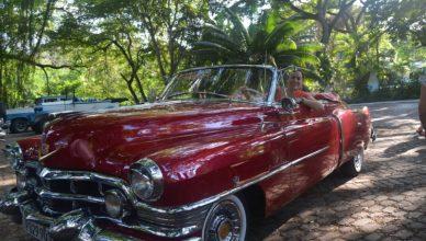 Havana - Old Timer