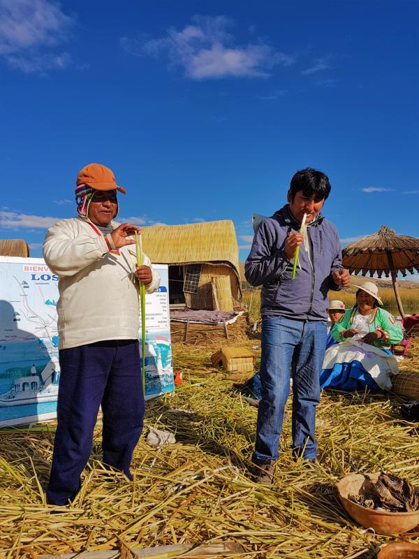 Titicaca Lake