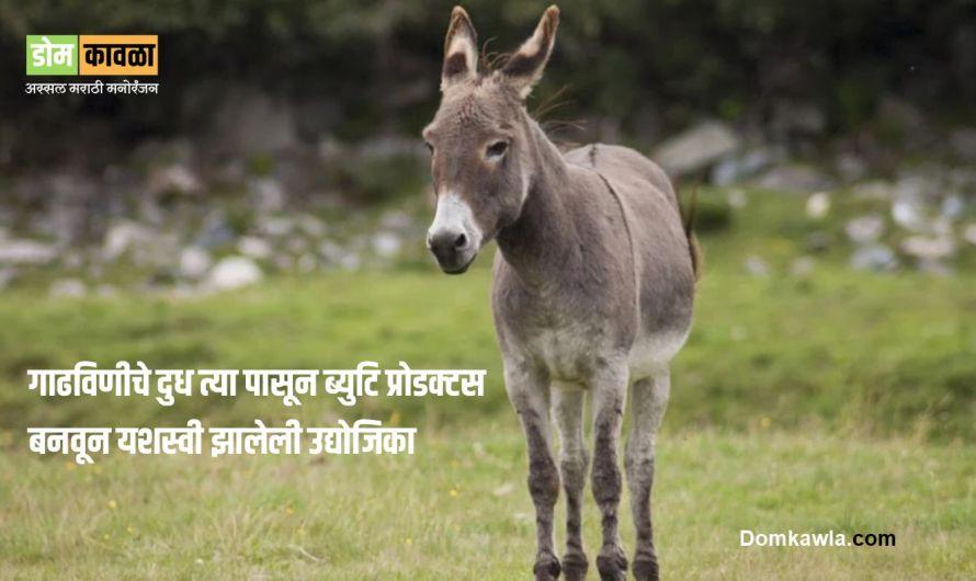 Donkey Milk एक विचित्र व्यवसाय करून यशस्वी झालेली मुलगी