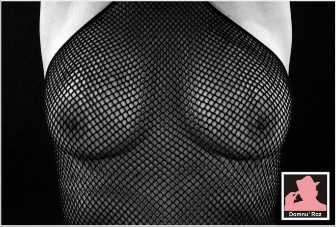 breasts-1871338_960_720
