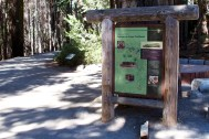 yosemite-national-park-domonthego-098