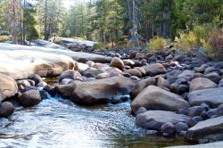 yosemite-national-park-domonthego-296