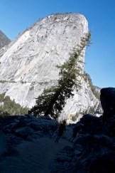 yosemite-national-park-domonthego-331