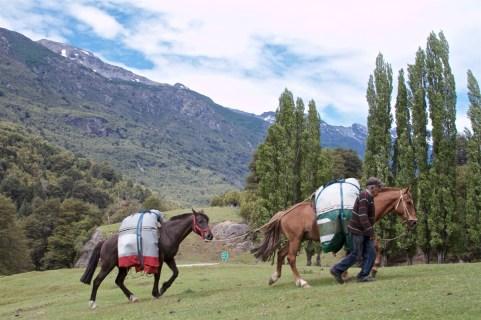 Bariloche-Argentina-Patagonia-DomOnTheGo 376