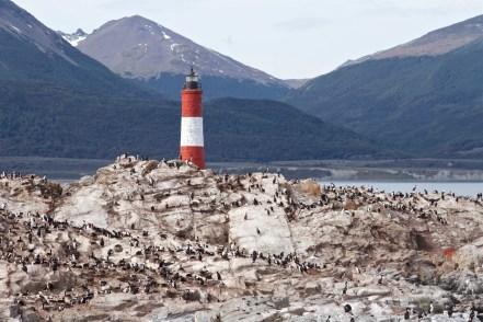 Ushuaia-Patagonia-Argentina-DomOnTheGo 217