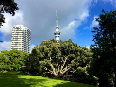 Auckland-NewZealand-DomOnTheGo 22
