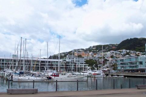 Wellington-NewZealand-DomOnTheGo 6