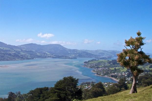 Dunedin-NewZealand-DomOnTheGo 15