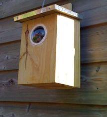 vogelhuisje-aanschuur