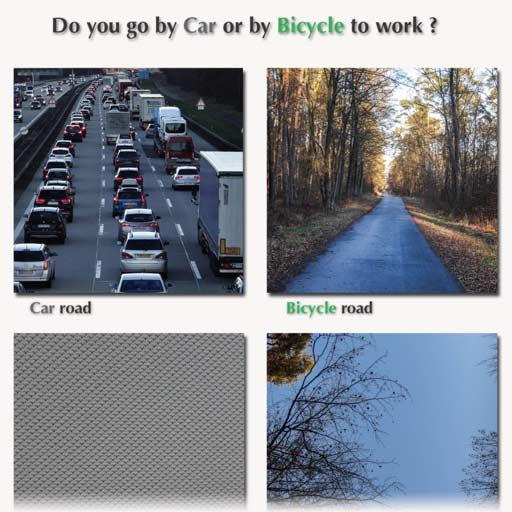 Car vs. bike blog image