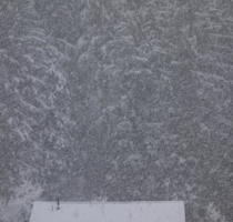 Ski-Sonnenkopf_62_(20170305)
