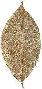 "Glitter -- Rubber Tree -- 3"" - Gold"