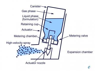 cleaning inhalers is it necessary how do i clean my inhalers rh donaldmahler com Lung Inhaler Drug Ellipta Inhaler