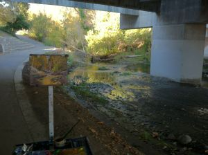 Painting under Woz Way