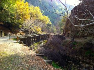 Alum Rock bridge over Penitencia Creek.