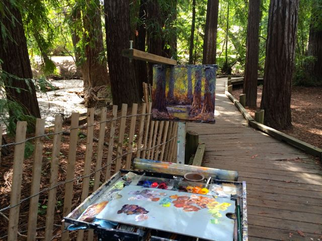 My easel in the redwood grove.
