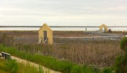 At Alviso Marina County Park. I really can't figure out why they have to 'frame' and obstruct the natural view.