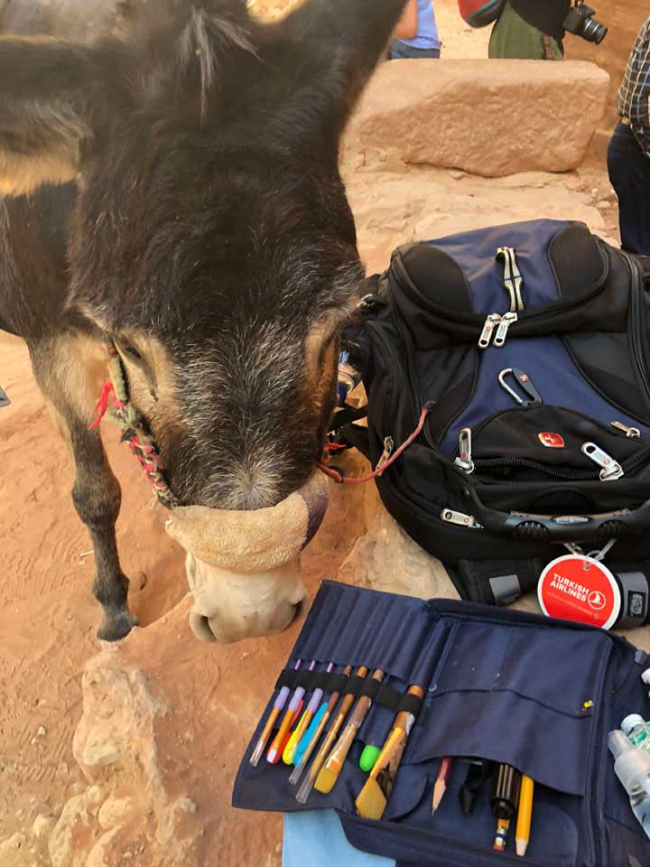 The donkey liked the smell of my paints