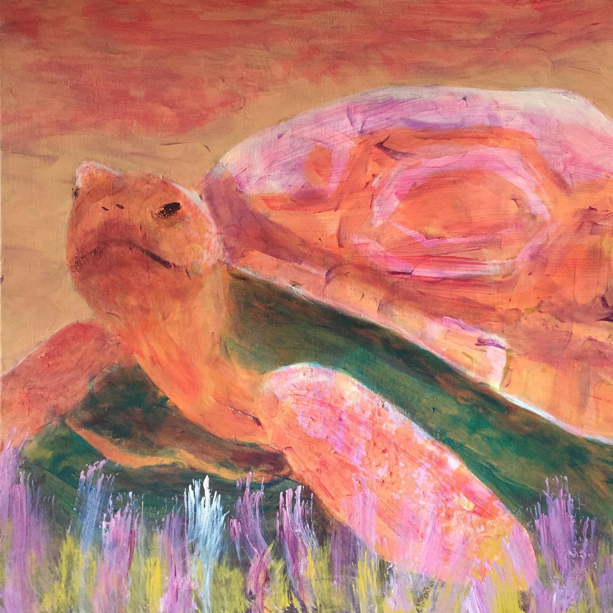 Tortoise - - Original for Sale - Prints Available