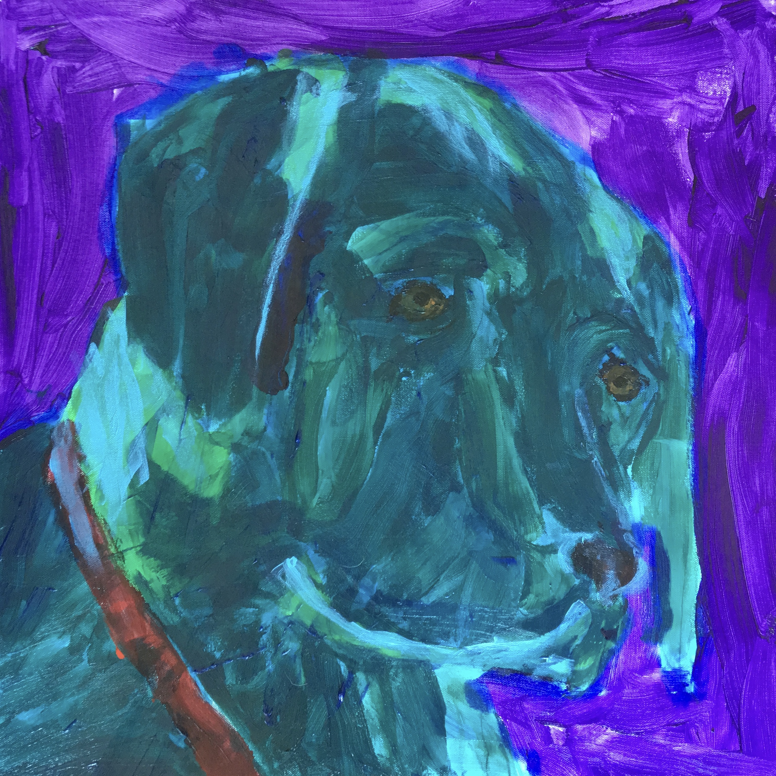 Black Lab - SOLD - Prints Available