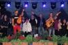 scheed-konzert-donaustadt-29-6-2013