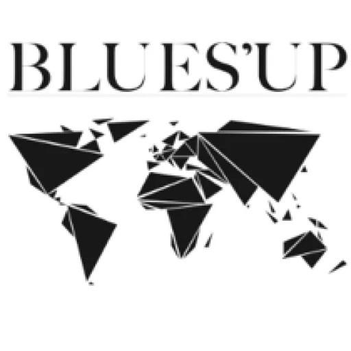 cropped-logo-bluesup-2012