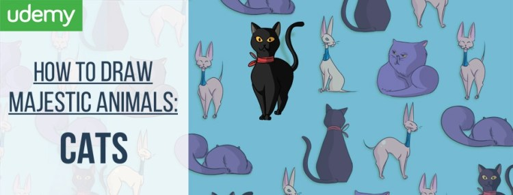 how to draw, how to draw cats, udemy, online course, coupons, udemy coupon, sale, drawing, digital drawing, digital painting