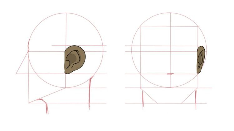How to Draw Ears - Drawing Round Ears