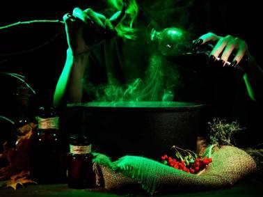 Exposición de Brujas en Coyoacán: vive la magia para toda la ...