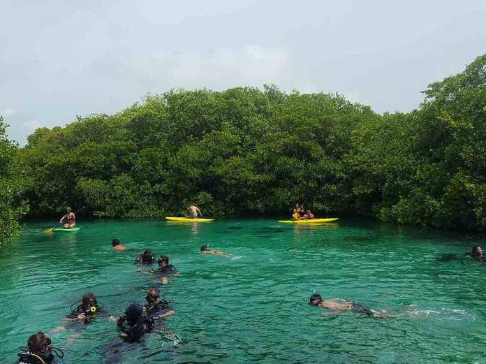 Qué hacer en Tulum: actividades en el Pueblo Mágico | Dónde Ir
