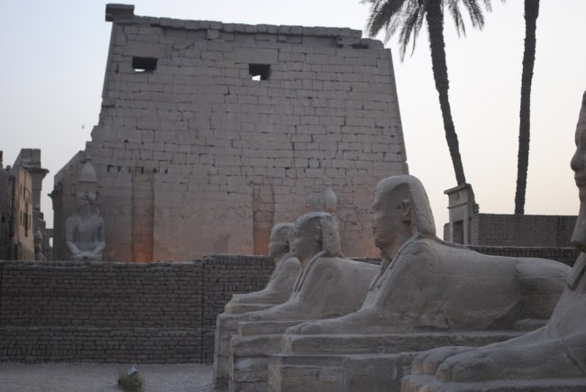 Sendero que conecta los templos de Luxor y Karnak
