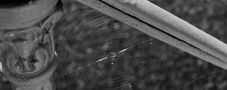 Don Diseño - Cómo hacer un presupuesto de servicios profesionales. Materiales y Herramientas de apoyo. - Tela de Araña en escalera. Fuerte del Rapitan, Jaca, Huesca. 2011 - Carlos Luzón