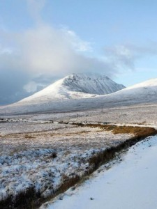 Commonages around Errigal may be boycotted by Donegal farmers.