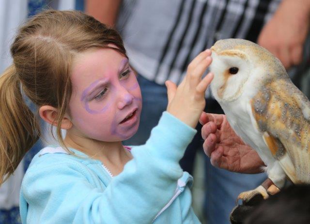Raphoe Fair Day 02
