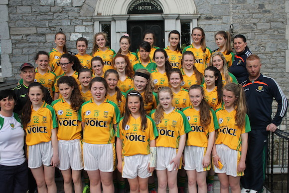 The 2014 Donegal Ladies team. Now the Donegal LGFA want girls for next year's squad