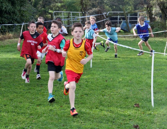 Donegal Schools Cross Country 28