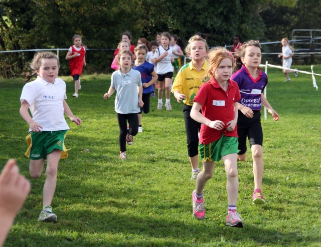 Donegal Schools Cross Country 31