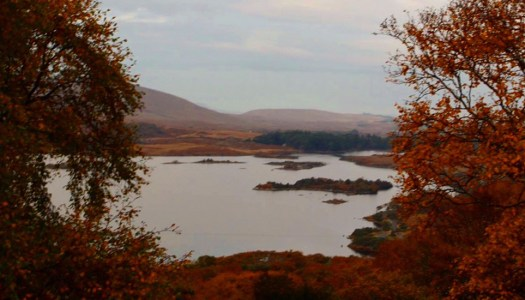 Get the greatest view of Glenveagh