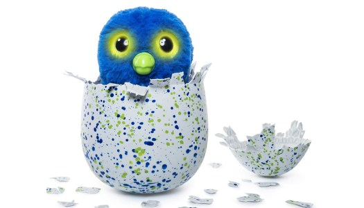 Donegal kids upset by non-hatching Hatchimals