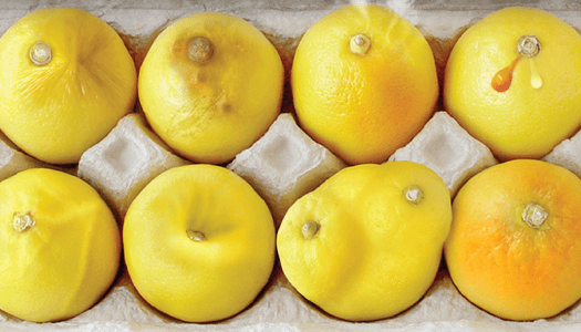 This picture of lemons can help you detect breast cancer