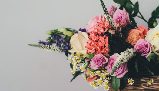 This blooming beautiful festival is every flower lover's dream