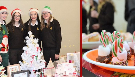 Enterprising schoolgirls get crafty for Christmas
