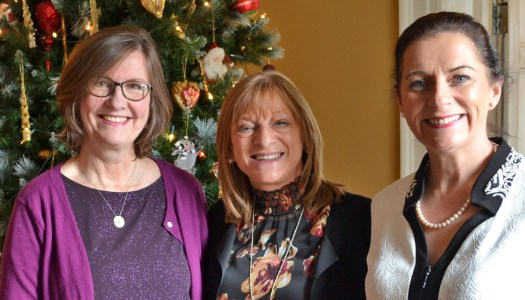 Events: Donegal Women in Business mark a marvelous year with Christmas lunch