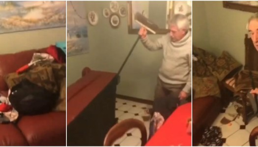 Watch: Hilarious Kerry bat family struggle with yet another intruder!