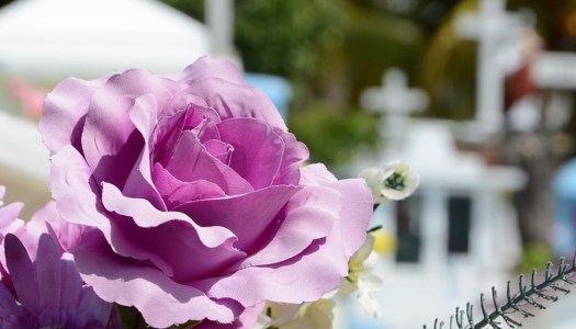 Woman's Words: 'How much should I charge for a funeral?'