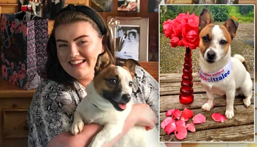 Donegal woman's pup chasing the Nose of Tralee title