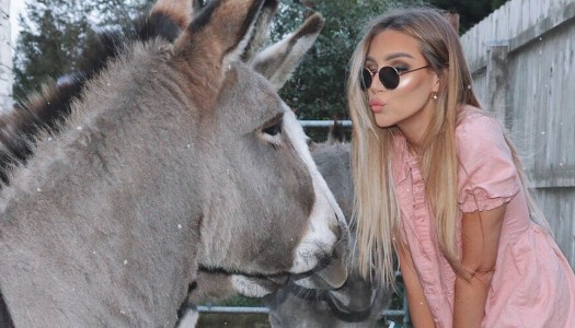 Influencer donating vintage Dior bag for Donkey Sanctuary fundraiser